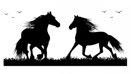 pferde wandtattoo pferd wandsticker wandaufkleber m dchen zimmer dekoration ebay. Black Bedroom Furniture Sets. Home Design Ideas